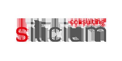 Silicium Consulting partner Logo